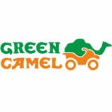 GreenCamel (3)