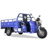 Грузовые электротрициклы (16)