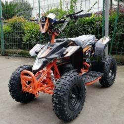 Детский электроквадроцикл El-Sport Teenager mini 1000W 36V/12AH
