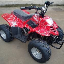 Детский Квадроцикл GreenCamel Гоби K50 (36V 800W R7 Цепной привод)