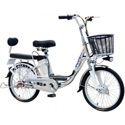 Электровелосипед GreenCamel Trunk-20 (R20 350W 48V 10Ah) Alum