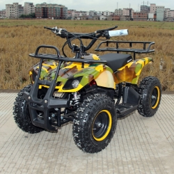 Квадроцикл GreenCamel Gobi K200 (36V 800W R6 Цепной привод)