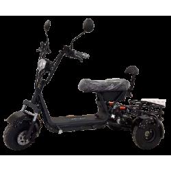 Электроскутер трицикл CityCoco TRIKE GT-X3 Pro 1000W 48V 13AH