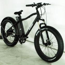 Фэтбайк El-sport bike TDE-03 350W/ 36V/ 10AH
