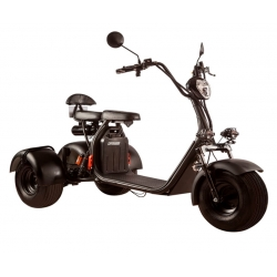 Электробайк трицикл 1500W/ 60V/ 20AH (съемный АКБ)