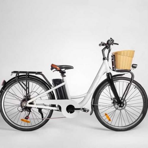 Электровелосипед GreenCamel Briz (R26 350W 36V 10Ah) Alum