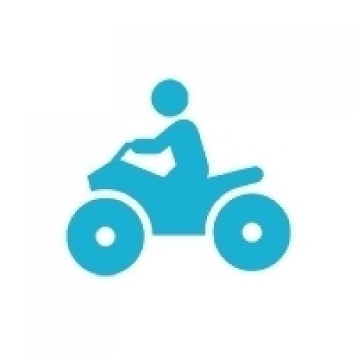 Детские квадроциклы и багги