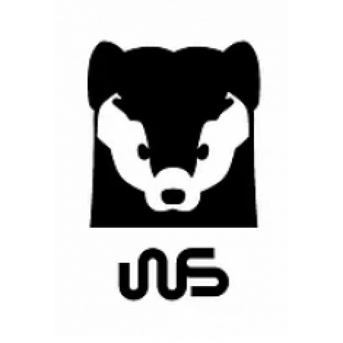 Электроскутеры WS-Electro - White Siberia